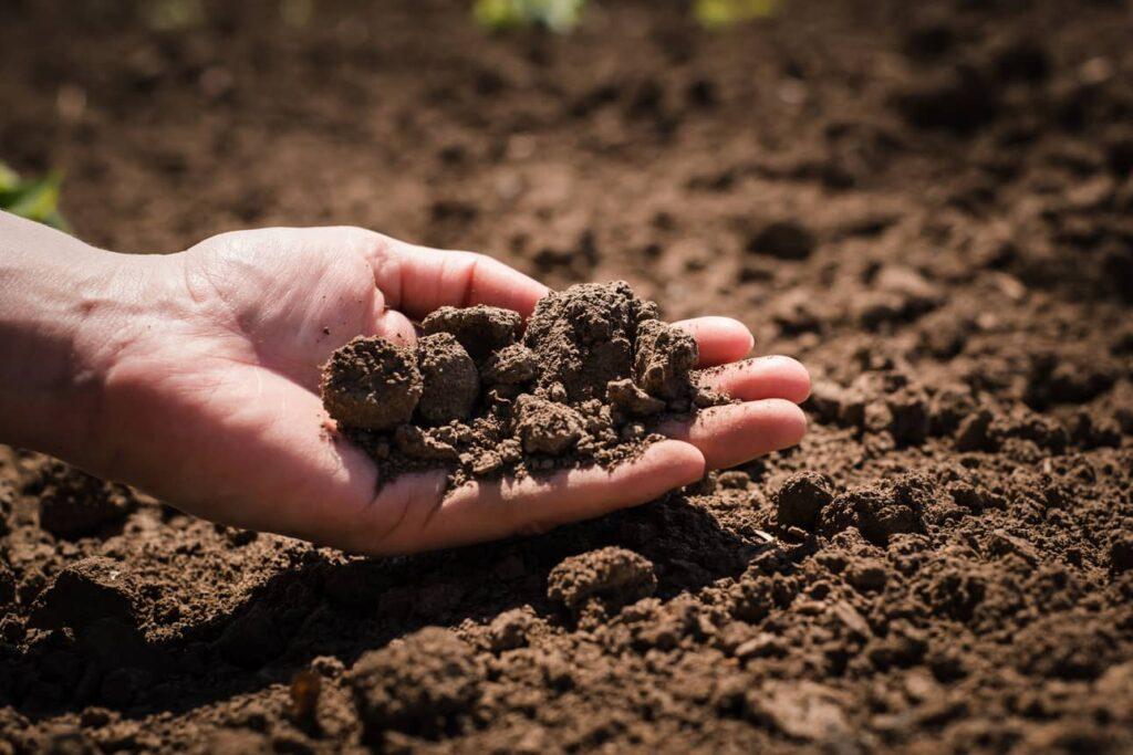 Giro d'Italia per la salute dei terreni agricoli